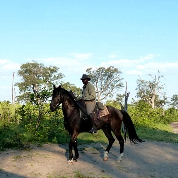 Botswana horse safari guide 2
