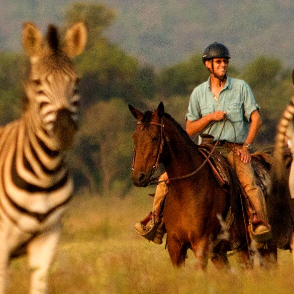 Superb Namibia Horse Safari Guide Interviewed